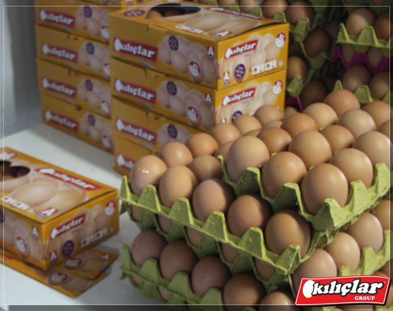 Kılıçlar Yumurta